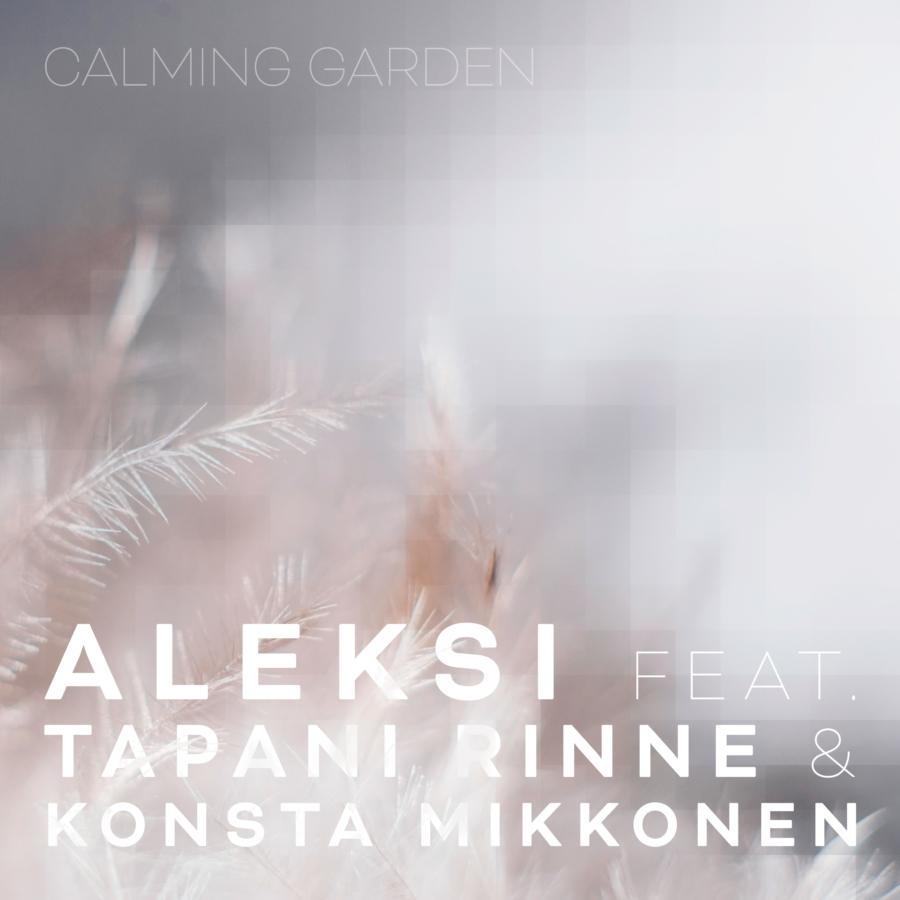Aleksi feat. Tapani Rinne & Konsta Mikkonen: The Evening 2